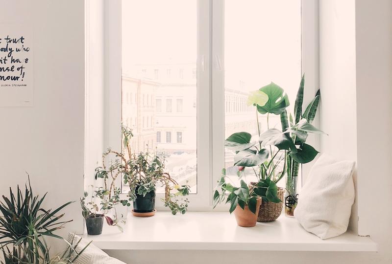 Offert fönsterbyte